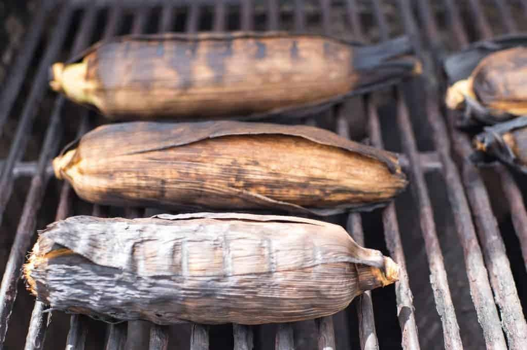 Corn on the cob being grilled with the husks on until darkly charred by foodology geek.