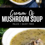 paleo cream of mushroom soup recipe pinterest image by foodology geek