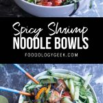 spicy shrimp noodle bowls pinterest image by foodology geek.
