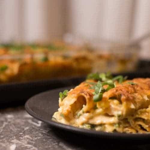 Creamy Shrimp Enchiladas Square