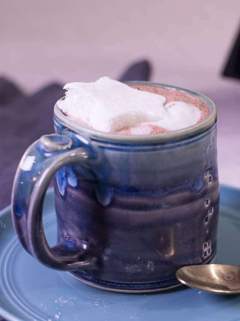 Cup of hot cocoa with homemade marshmallows.