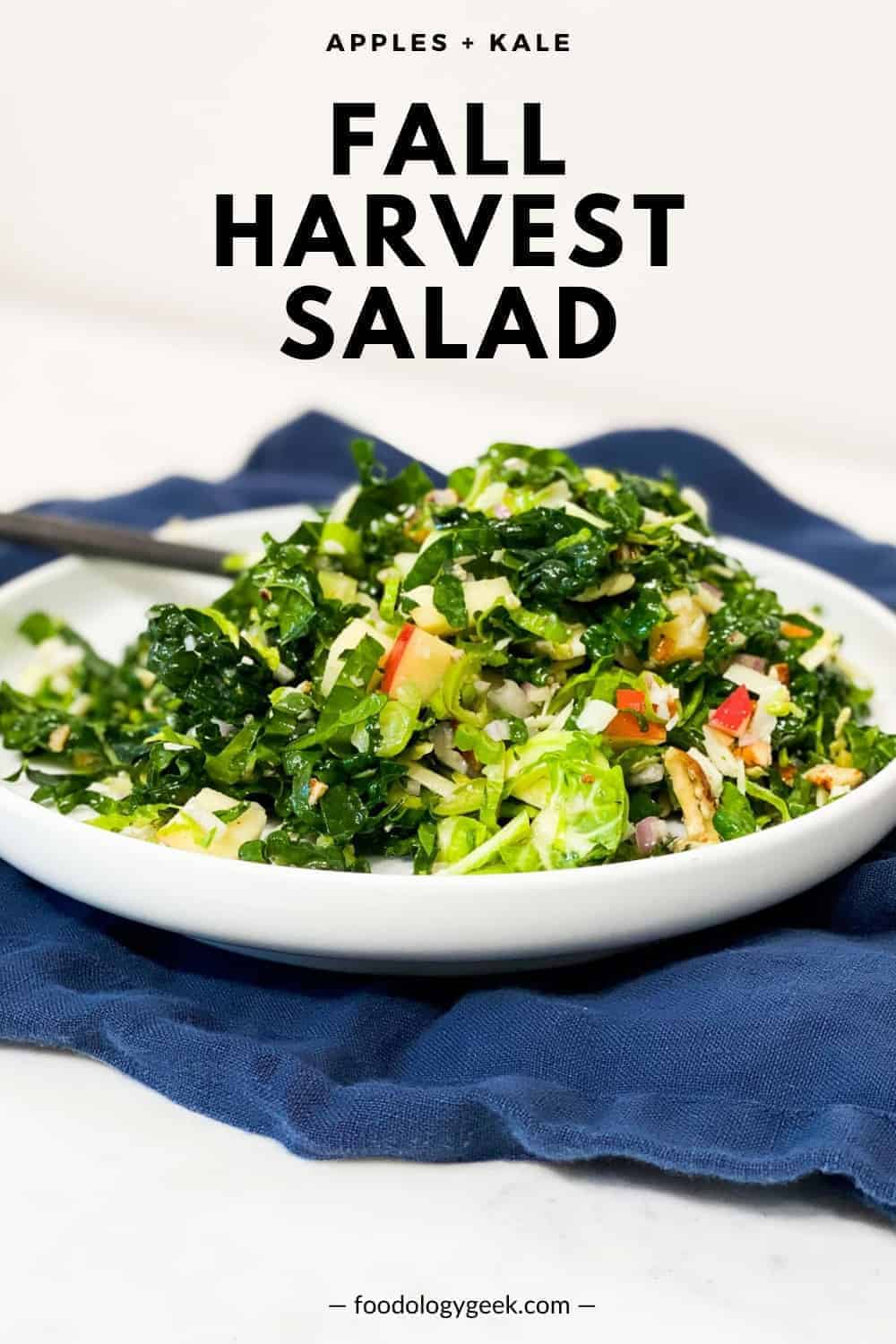 fall harvest salad on a white plate with ab lue napkin