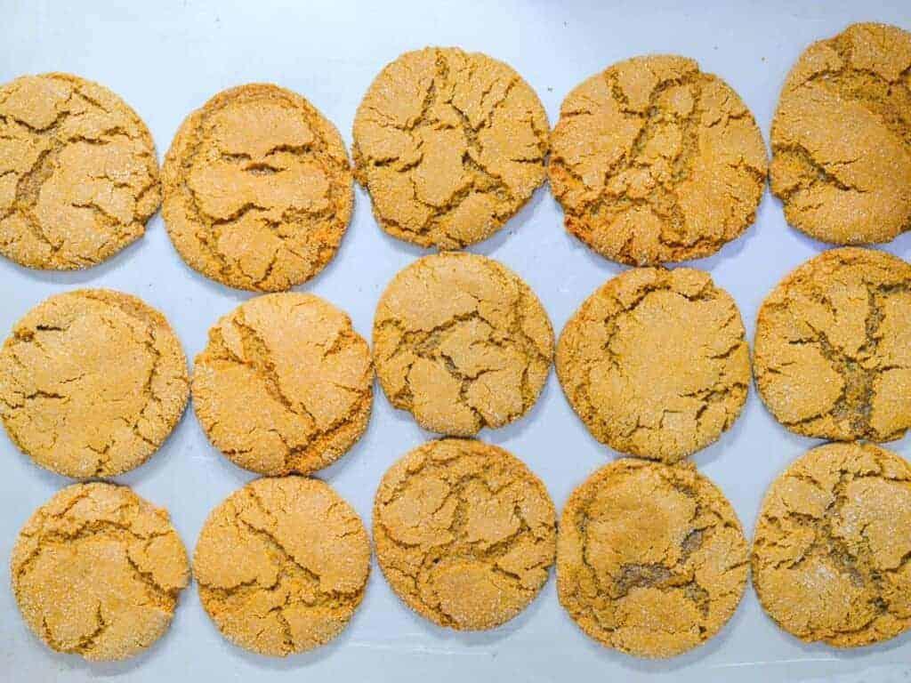 sheet pan of molasses cookies