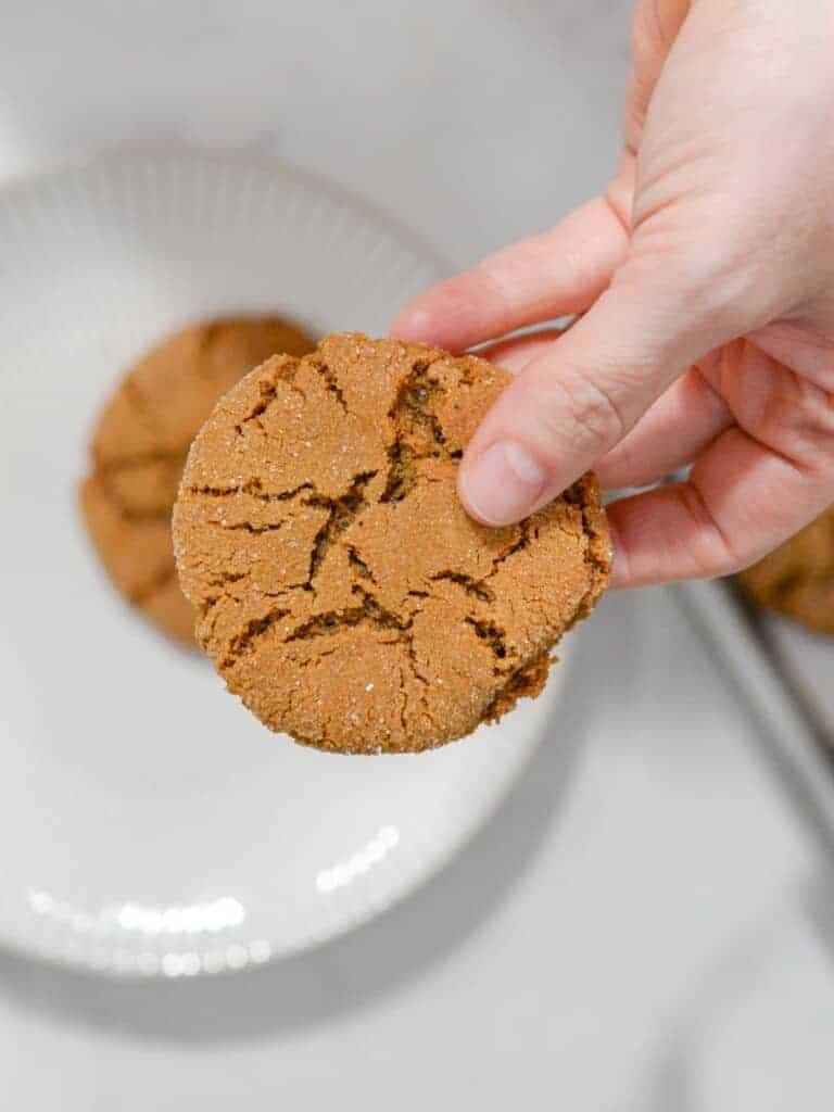 molasses crinkle cookie