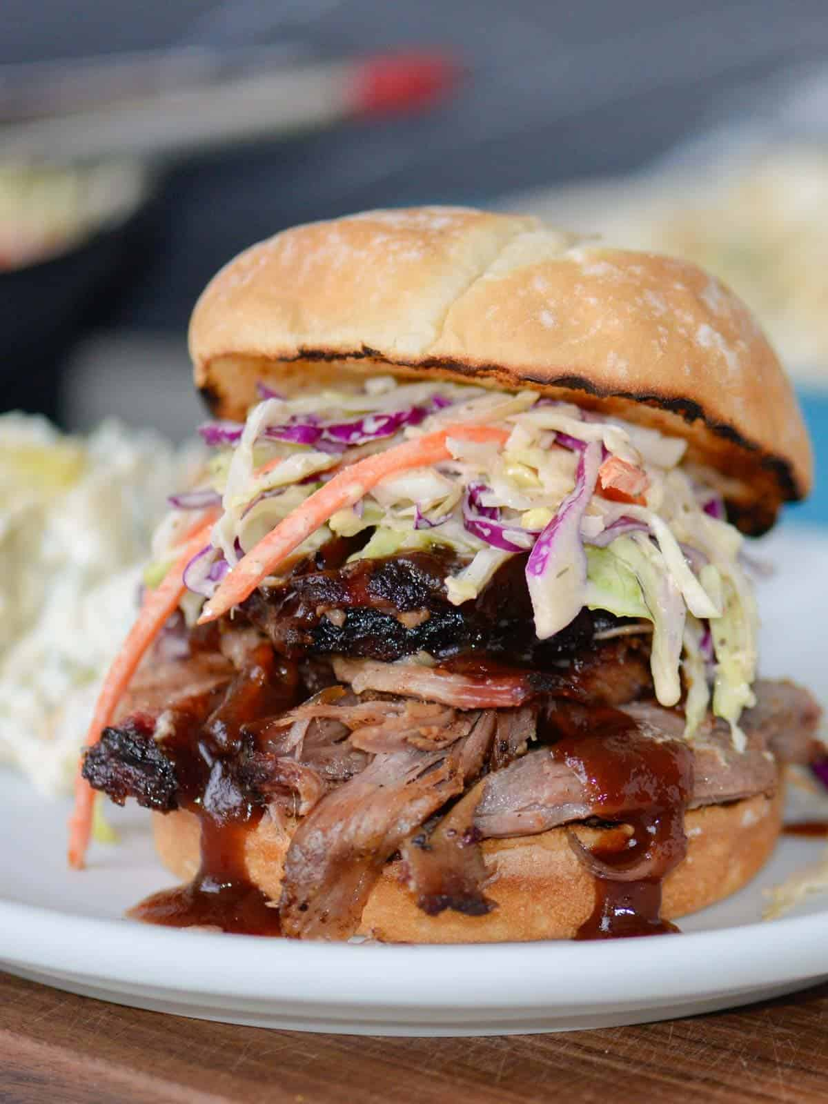 pulled pork sandwich with bbq sauce and southern coleslaw