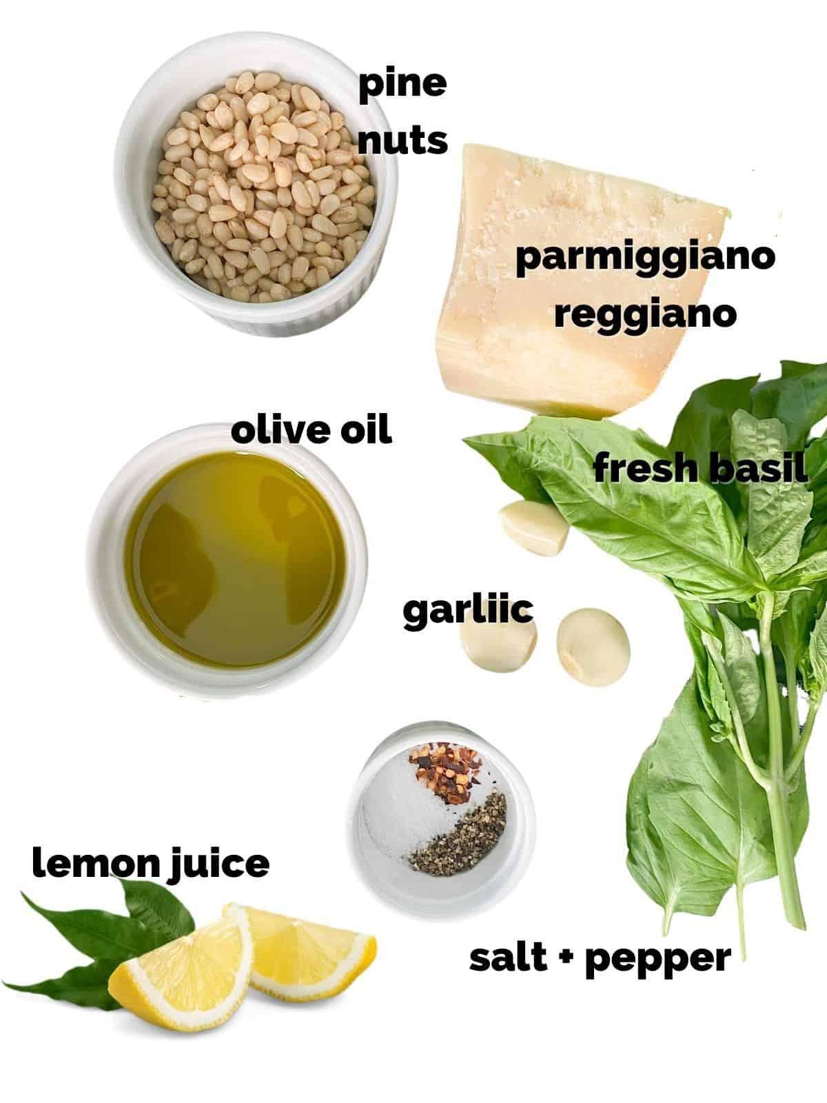 Ingredients or basil pesto recipe